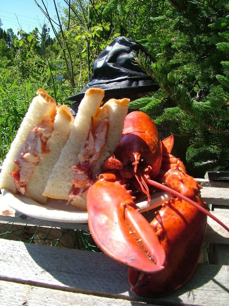 Wreck Cove General Store lobster sandwich   - Honeymooning -