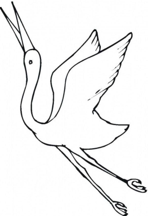 Beautiful Crane Bird Coloring Pages For Kids Animal Vista