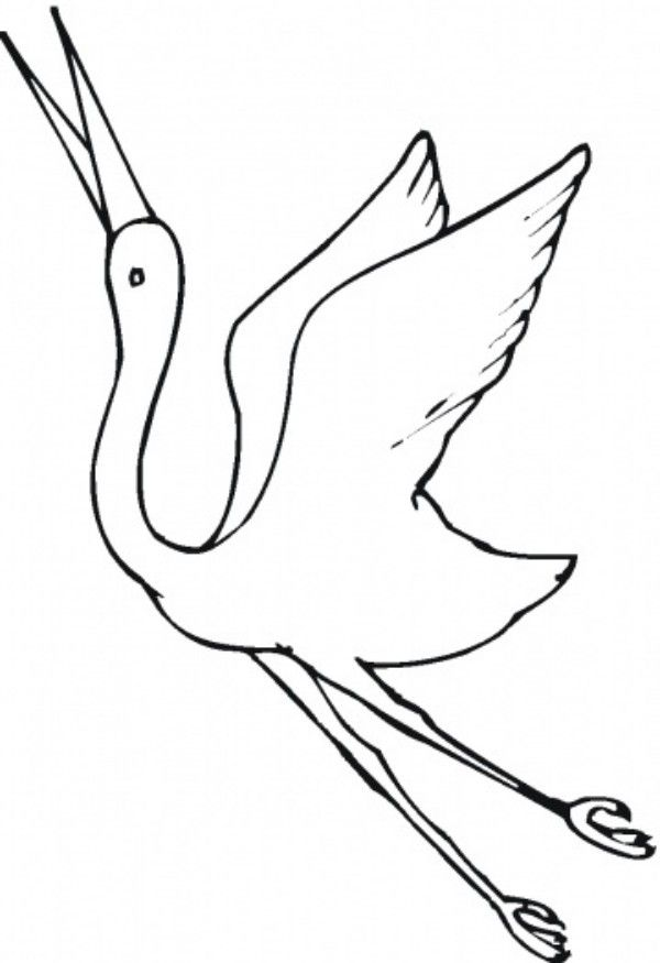 Beautiful Crane Bird Coloring Pages For Kids Animal Vista Yooall