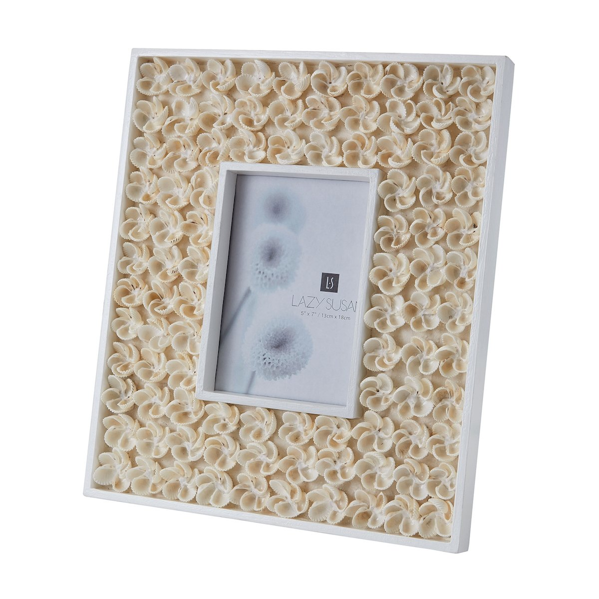 Natural Shell Bud 5x7 Frame by Dimond Home | 5x7 frames and Products