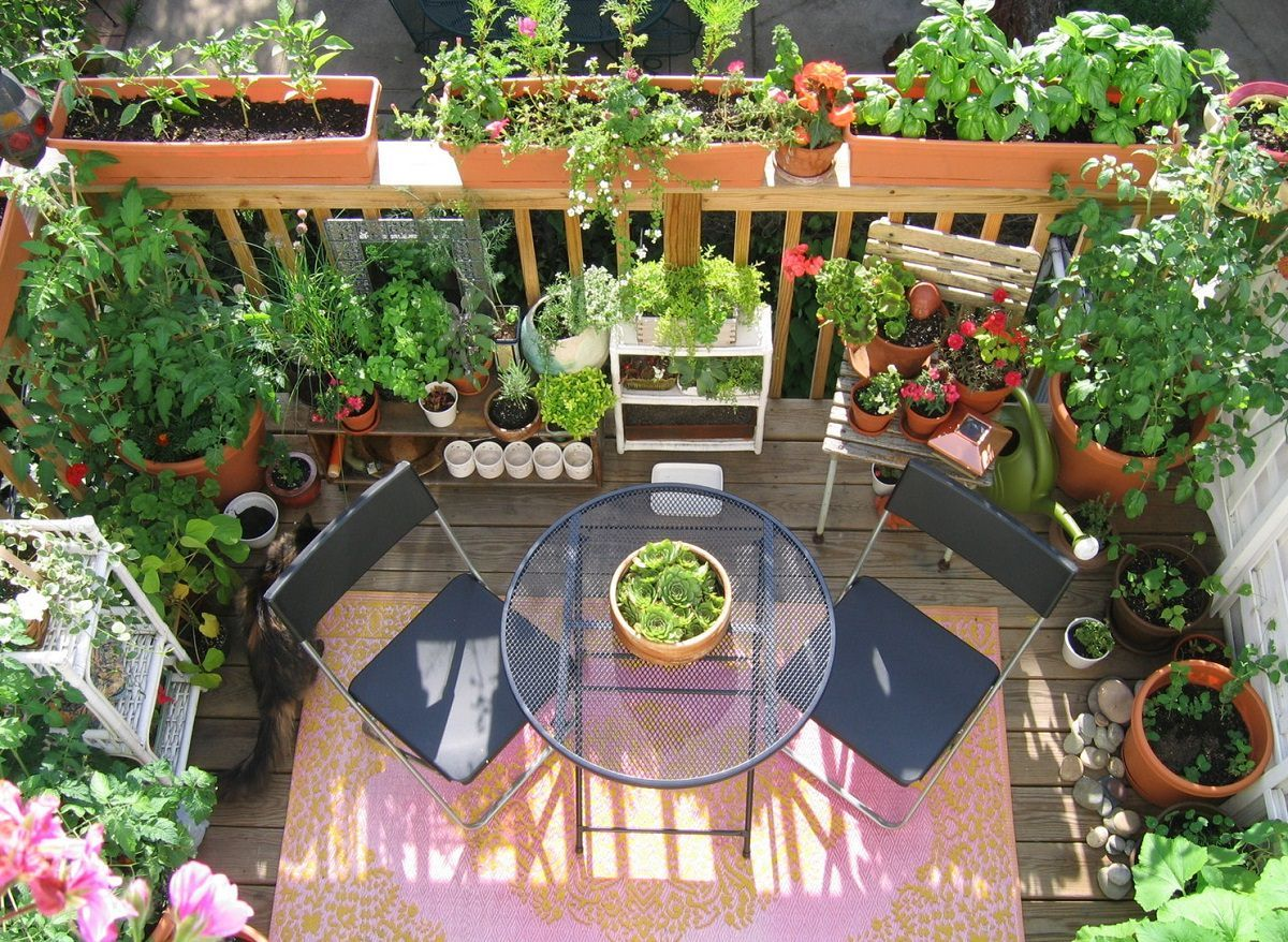 11 Deck Vegetable Garden Ideas To Grow More In Less Space Small