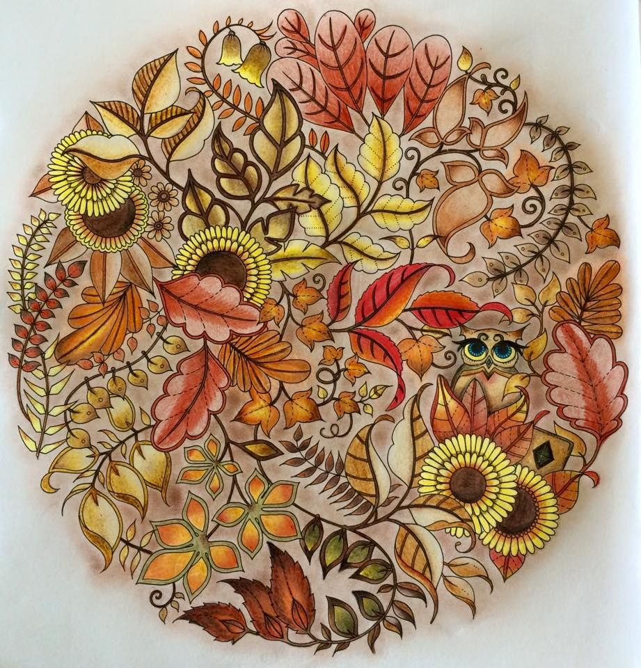 ENCHANTED FLOREST If Youre In The Market For Best Coloring Enchanted Forest BookColored