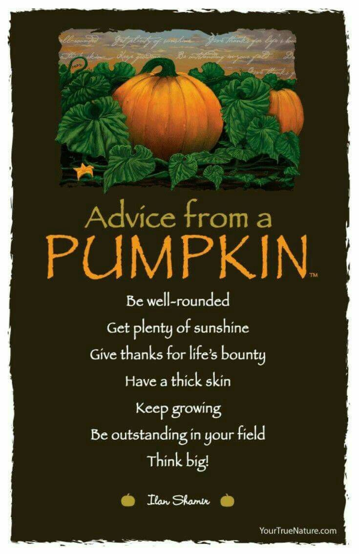 32+ Fall sayings for pumpkins ideas in 2021