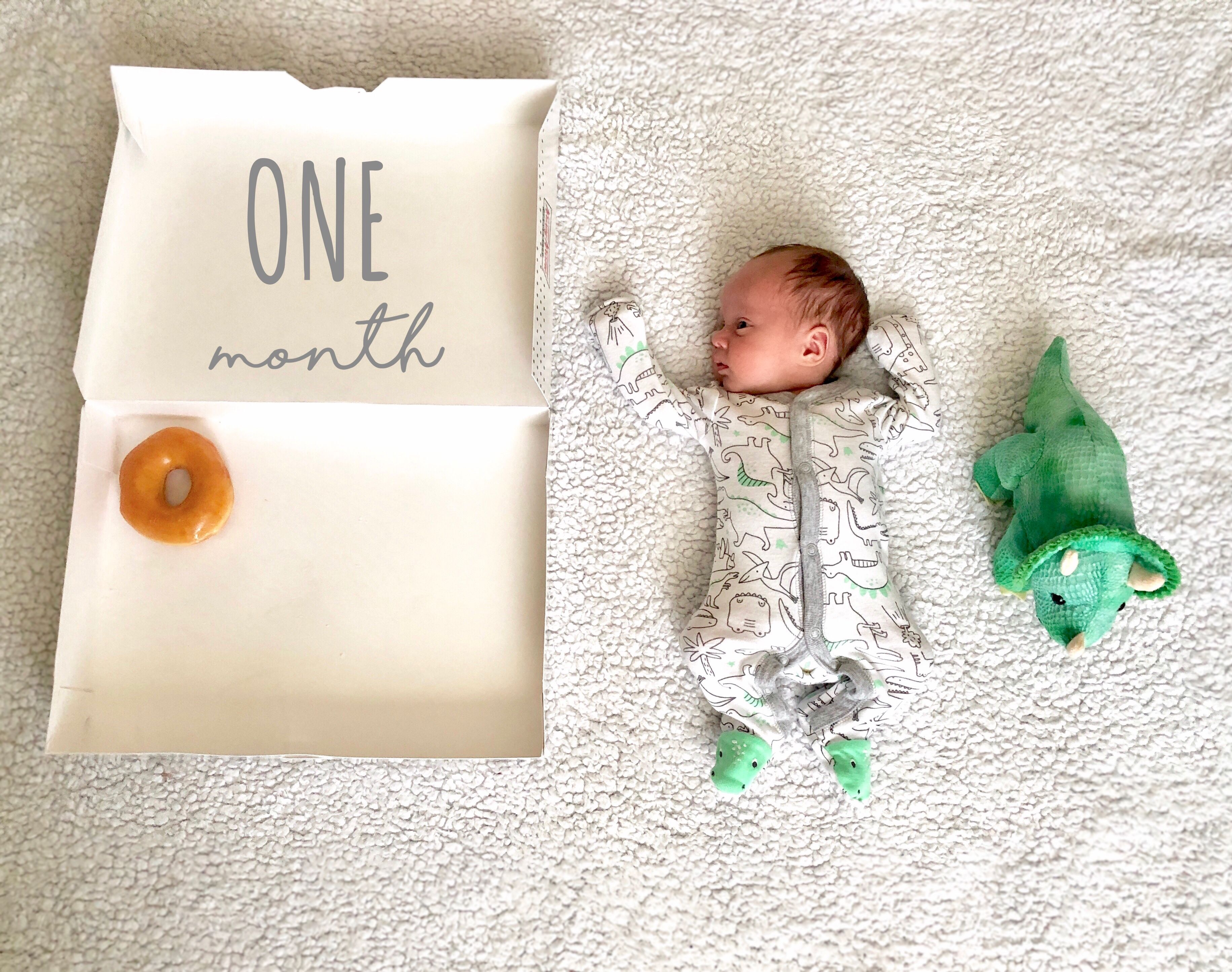 Monthly Doughnut Milestone Baby Photos Monthly Baby Photos Girl Baby Milestone Photos Monthly Baby Photos