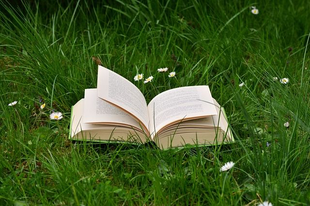 Best gardening books for beginner gardeners focusing on container gardening organic urban gardening