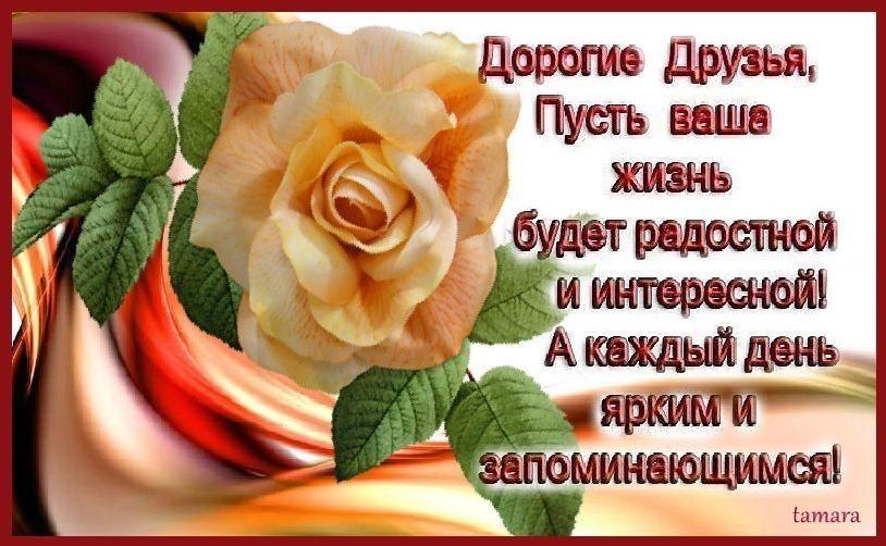 Я рада вашим пожеланиям и счастлива