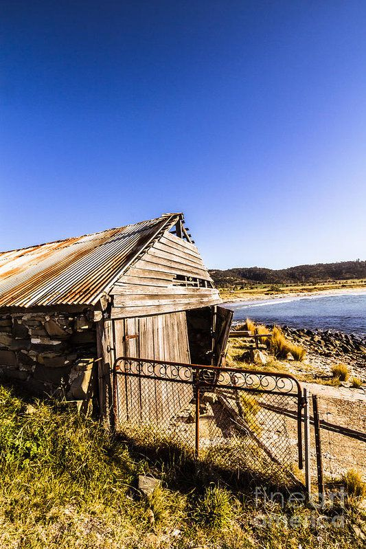 Torn and tattered boat shack made of wood and stones barely standing by the coast in harmonious Swansea, Tasmania by Ryan Jorgensen