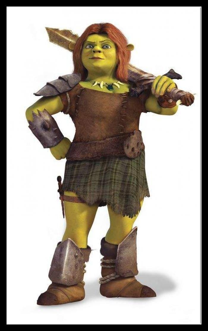 Shrek Fiona Warrior Costume For Kids Jpg 700 1 114 Pixels Princess Fiona Fiona Costume Shrek