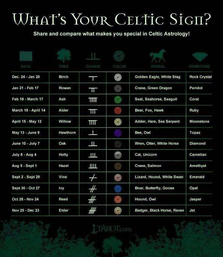 Celtic Astrology Chart.