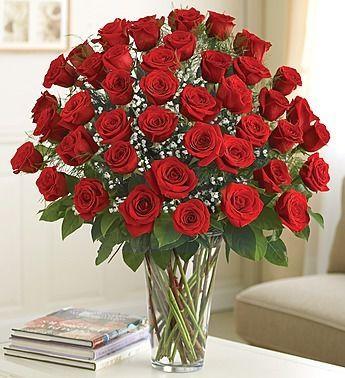 Long Stem Red Roses Flower Gift Same Day Flower Delivery Rose Arrangements