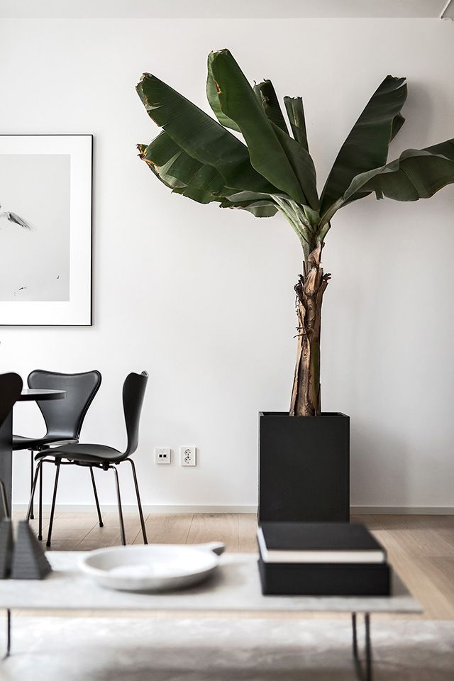 TDC: Oscar Properties | Beautiful Styling by Annaleena | Home ...