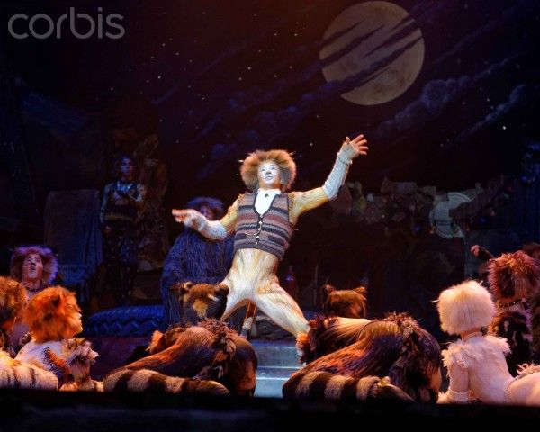 Pin on Cats the musical
