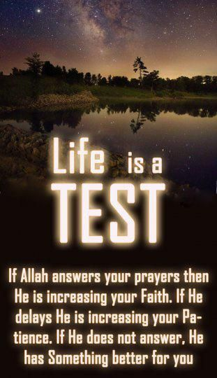 Life Is A Test Life Quotes Islamic Quotes Love Quotes