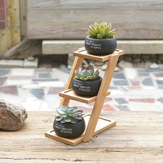 1 Set Cement Succulent Planter Pot Geometric Flower Pot 3 Bonsai Cactus Planters with 3-Tier Bamboo Shelf (3 Pots + 1 Stand)