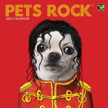 Funny Dog Calendars