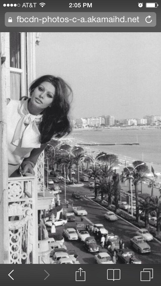 Sophia Loren ---sex kitten of the 60's