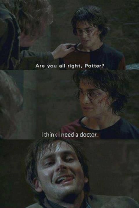 Not Harry Potter Crossover Time Travel