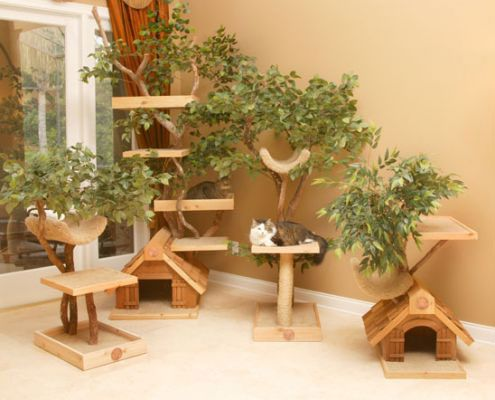 Unique Cat Tree Houses with Real Trees from Pet Tree House ...