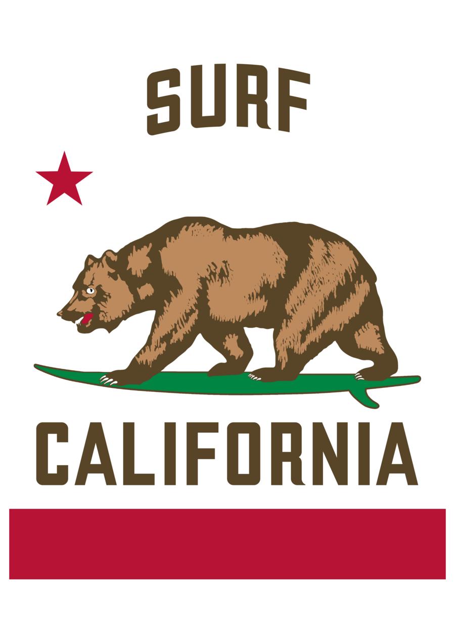 California Surf Flag California Surf California Poster California Logo