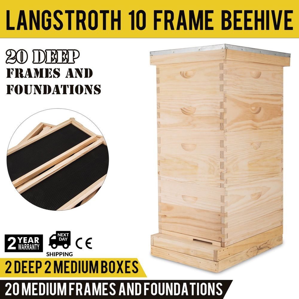 Langstroth Bee Hive 10 Frame 2 Deep 2 Medium Complete Kit Top Quality Beekeepers Ebay Link 10 Frame Bee Hive Bee Hives For Sale