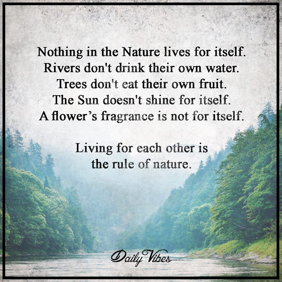 Living For Each Other Natures Quote Pinte
