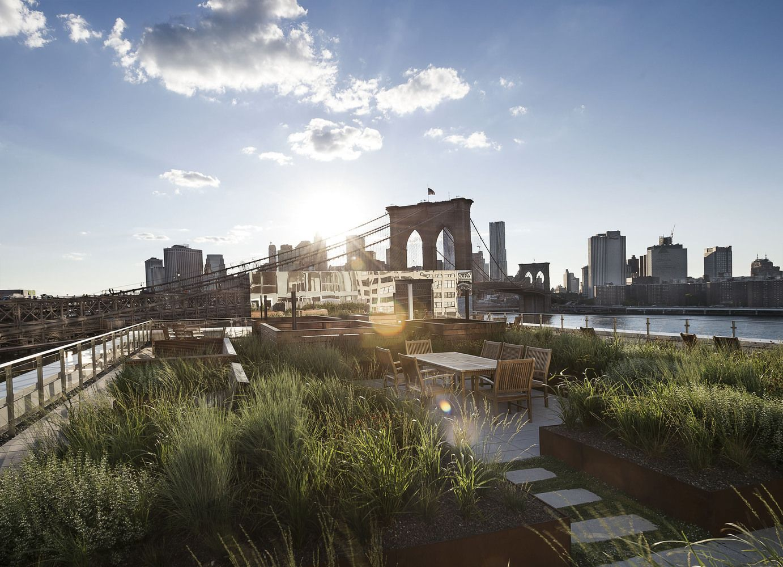 James Corner Field Operations projeta cobertura jardim no Brooklyn, Nova Iorque,© Matthew Williams, Cortesia de Two Trees Management Company