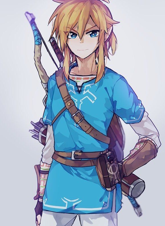 Link Legend Of Zelda Breath Of The Wild Legend Of Zelda Breath Legend Of Zelda Zelda Drawing