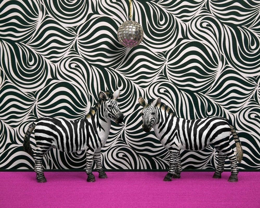 {{Funk-a-delic}}zebra print, funky retro 1970s disco, black and white - 1970s Camouflage 8 x 10. $20.00, via Etsy.