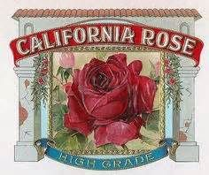 free vintage perfume labels to print - Yahoo Image Search Results