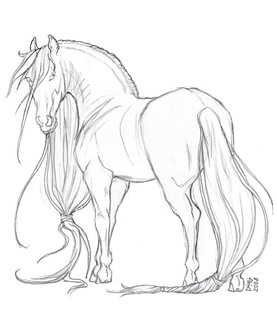 I love it when people draw horses with super duper long manes. It ...