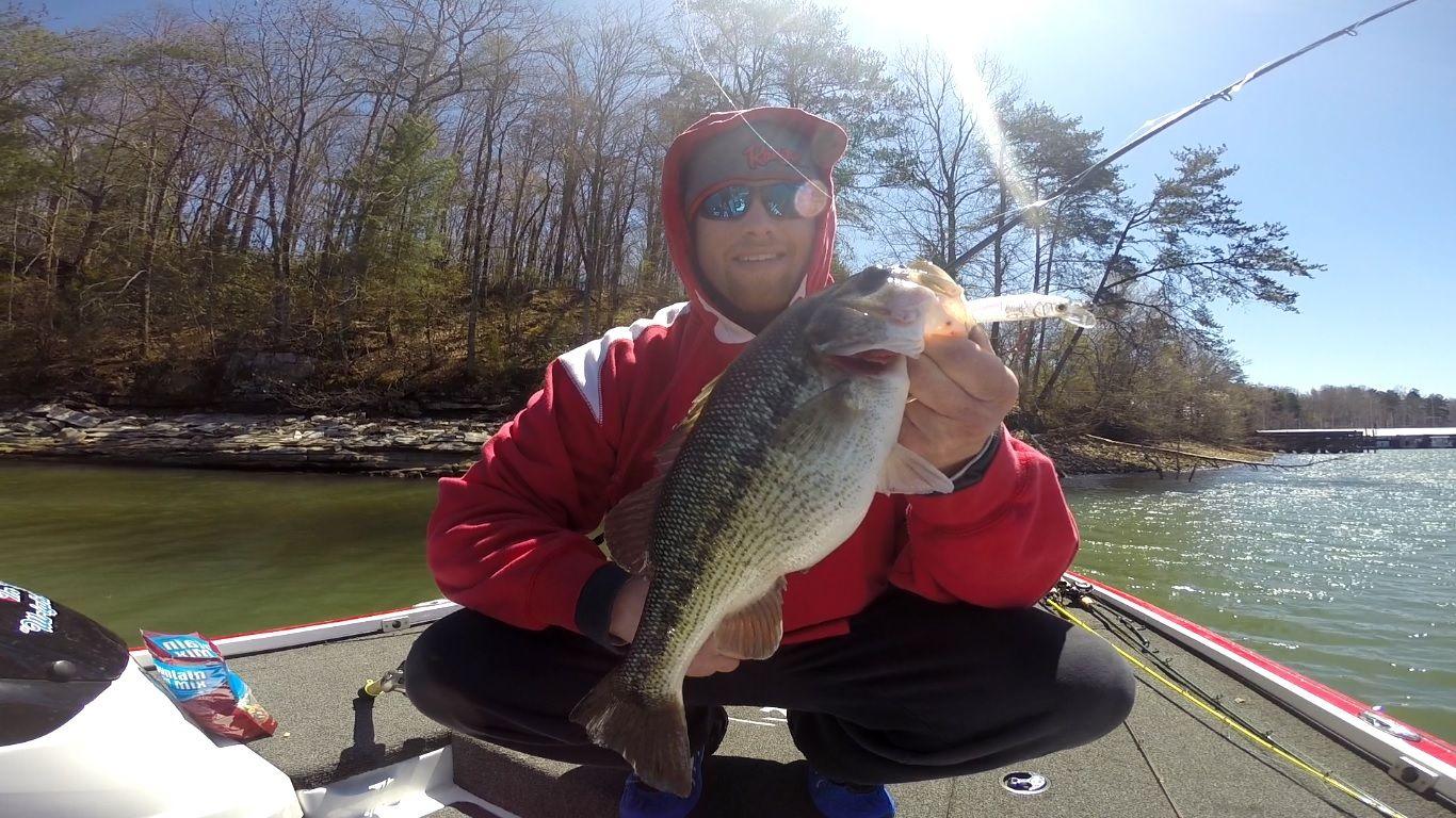 Spot From Chickamauga Lake Chickamauga Lake Bass Fishing Chickamauga