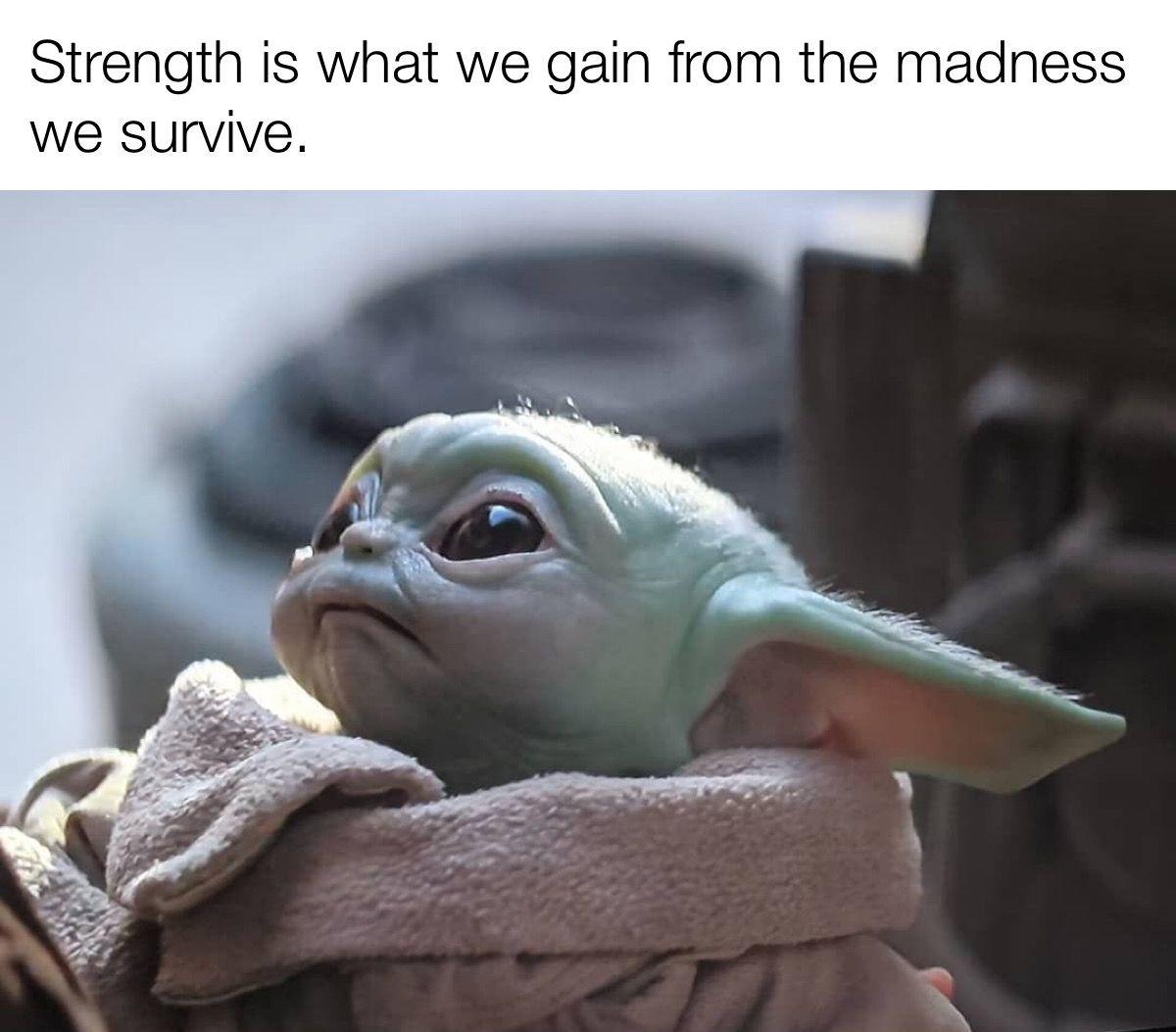 Pin By Writing Dragon On Baby Yoda Yoda Funny Yoda Meme Star Wars Yoda