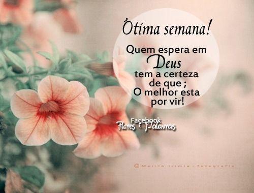 Imagens De Boa Semana Bençãos Frases Happy Week E Biblia