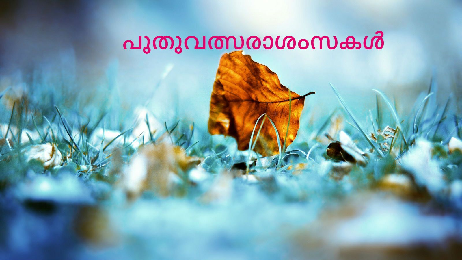 new year wishes in malayalam new year quotes malayalam 2017