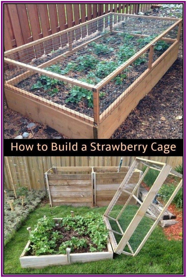 27+ raised bed designs for gardening tips, advice, and ideas 00013 is part of Vegetable garden beds, Diy raised garden, Vegetable garden design, Raised garden beds diy, Raised garden, Strawberry garden - 27+ raised bed designs for gardening tips, advice, and ideas 00013