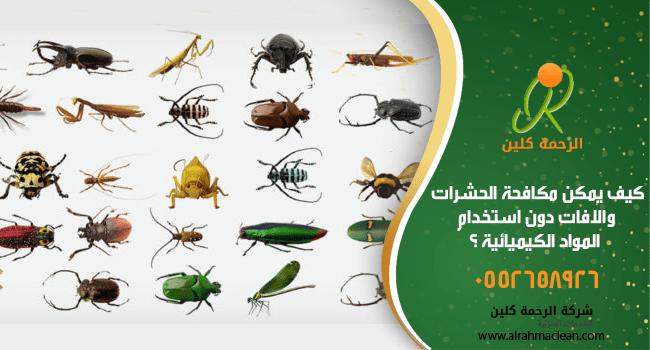 كيف يمكن مكافحة الحشرات والافات دون استخدام المواد الكيميائيه و بدون مبيدات Spoon Rest Tableware Dolls
