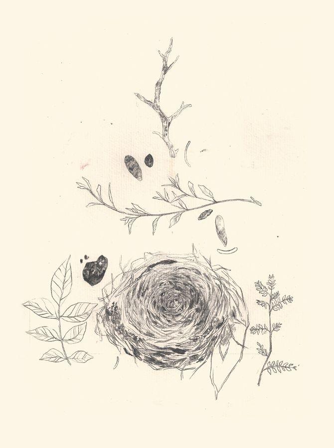 Drawings - Jem Magbanua Illustration