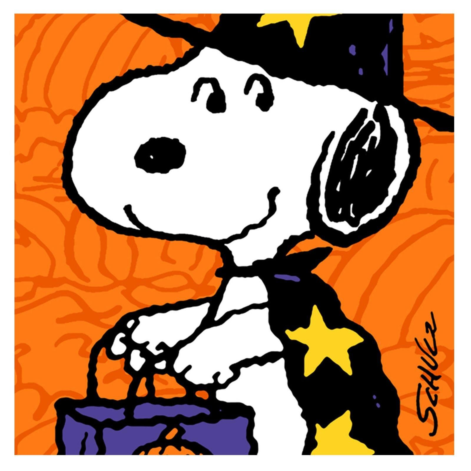 A SNOOPY WITCH IN GRYFFINDOR HOUSE.. | SNOOPY HALLOWEEN ...