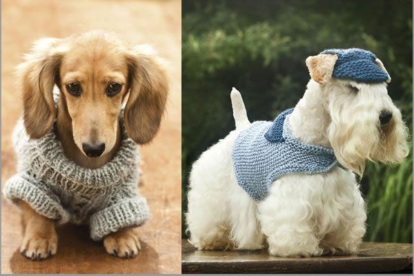 croche e trico para caes e gatos - Pesquisa Google
