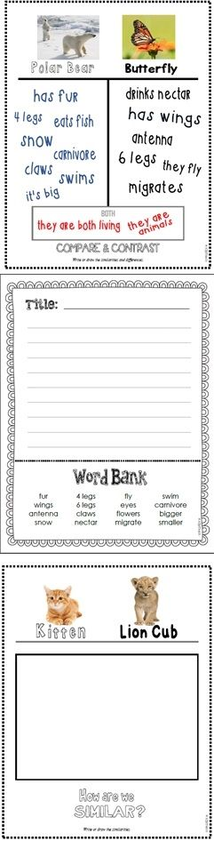 Compare Contrast Organizers Writing Prompts Templates Compare And Contrast Writing Prompts Graphic Organizers Compare and contrast worksheets 4th