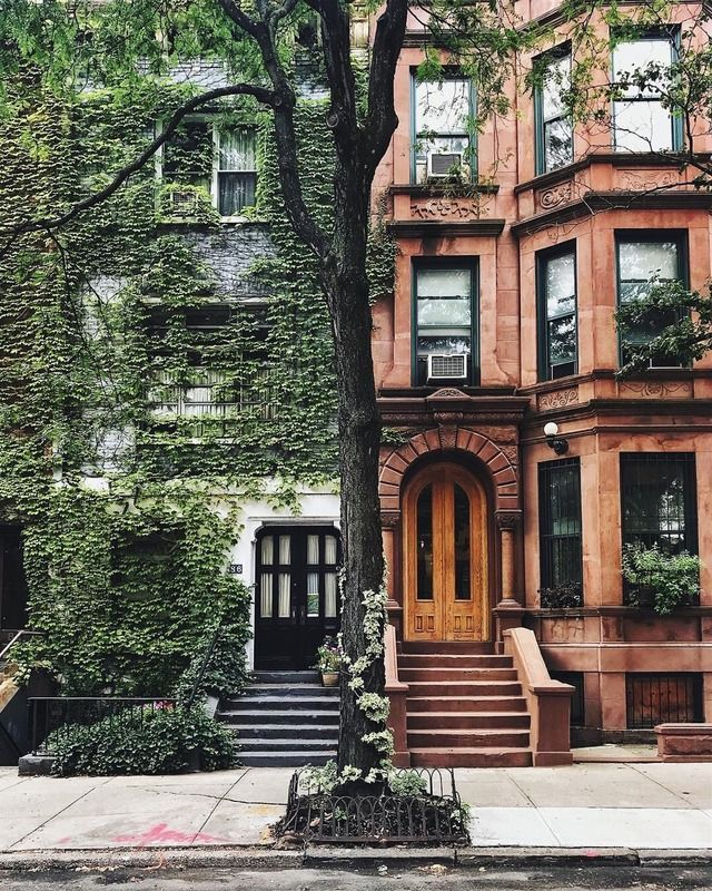 Little historic town homes covered in ivy. New york city