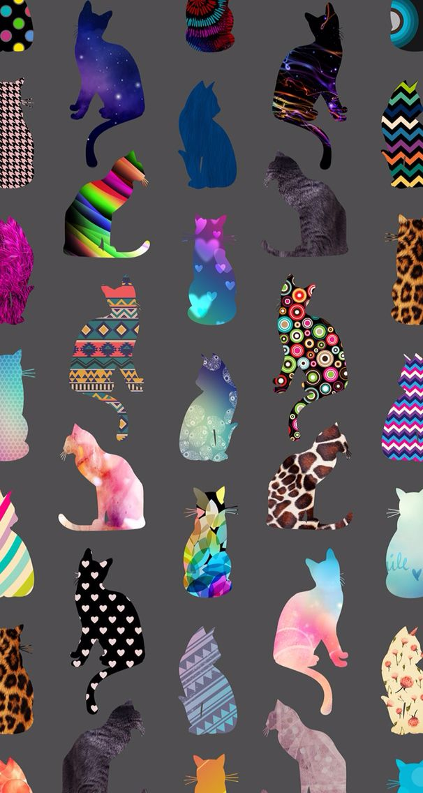 Colorful Cat Wallpaper Cat Wallpaper Cat Background Ipad Mini Wallpaper Colorful cat wallpaper phone