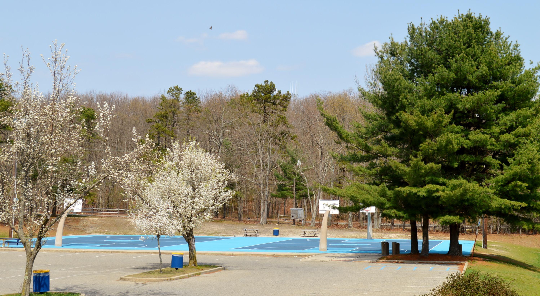 wonderful oak glen park #4: Basketball Courts at Oak Glen Park