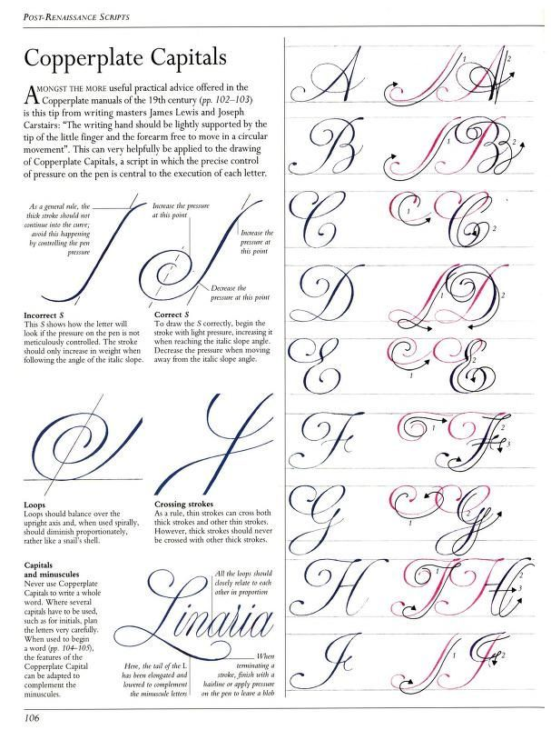Letras Copperplate Minusculas Orientacoes Simples Caligrafia