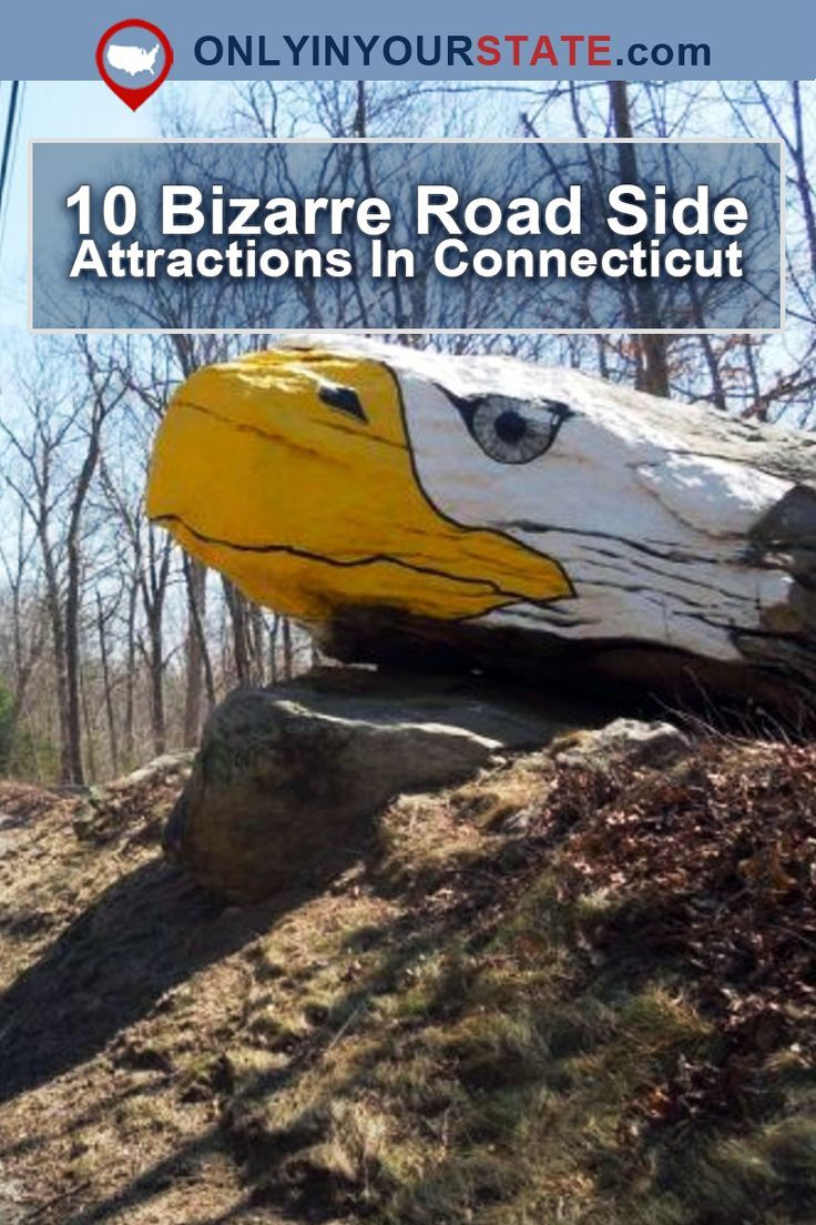 10 Bizarre Roadside Attractions In Connecticut That Will Make You Do A Double Take Roadside Attractions Surf Trip Connecticut