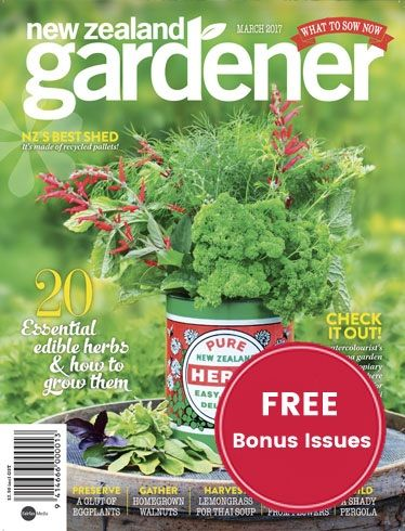 Perfect NZ Gardener, The Countryu0027s Top Selling Gardening Magazine, Features New  Zealandu0027s Most Beautiful Gardens