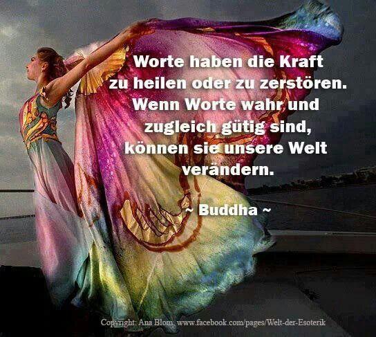 Welt der Esoterik | Zitate/Sprüche | Pinterest | Buddha, Dalai lama ...