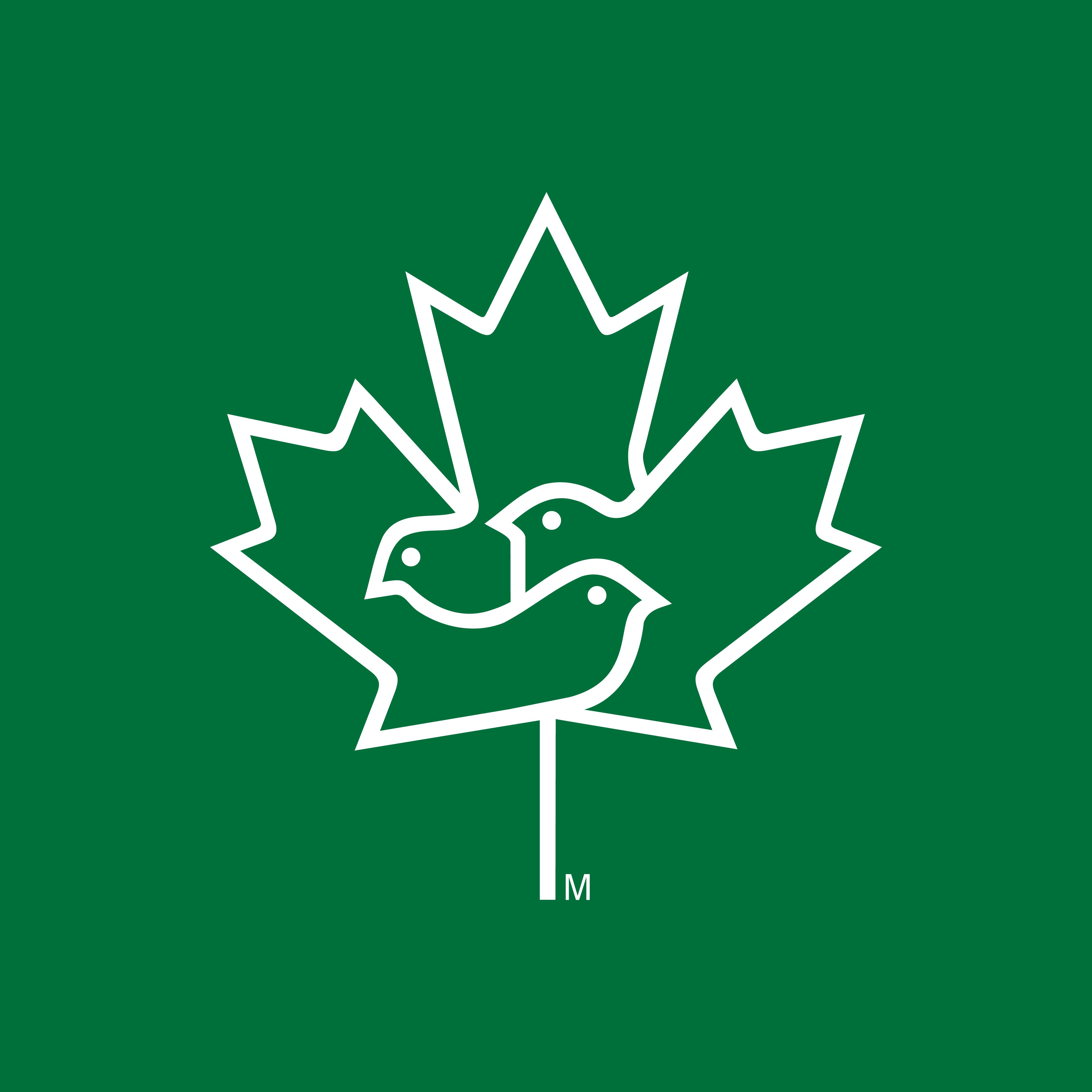 Canada Environmental Choice — Designer: Ted Larson; Firm: Oasis Creative Group Inc., Canada; Year: 1988