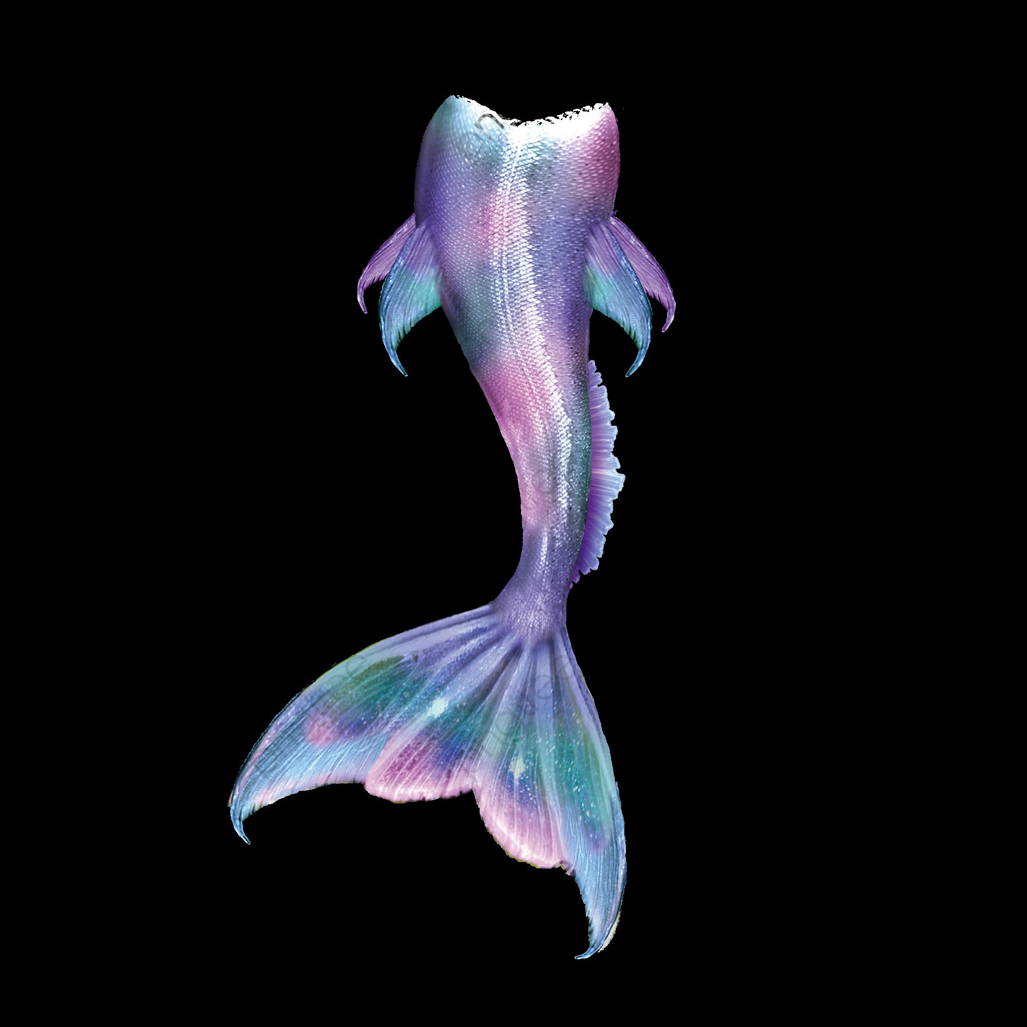Pin By Lynette Jones On Fantasy Mermaid Clipart Blue Mermaid Tail Beautiful Mermaids