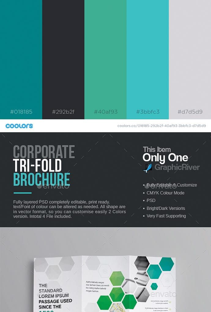 Color Palette Inspiration For Wordpress And Web Design Combinaison
